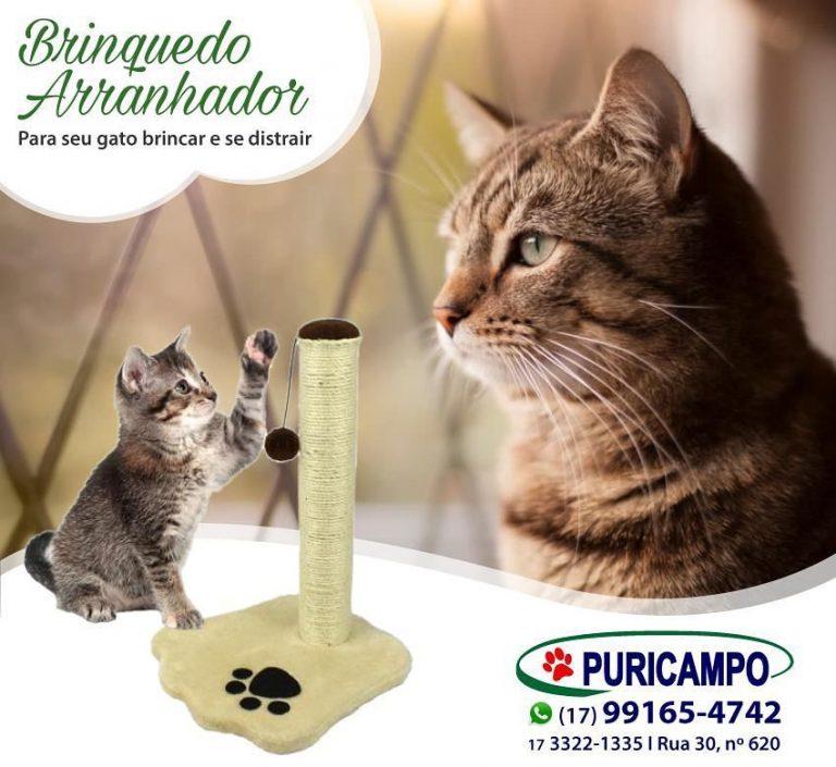 Seu gato gosta de arranhar os móveis? Aqui na Puricampo você encontra um brinque…