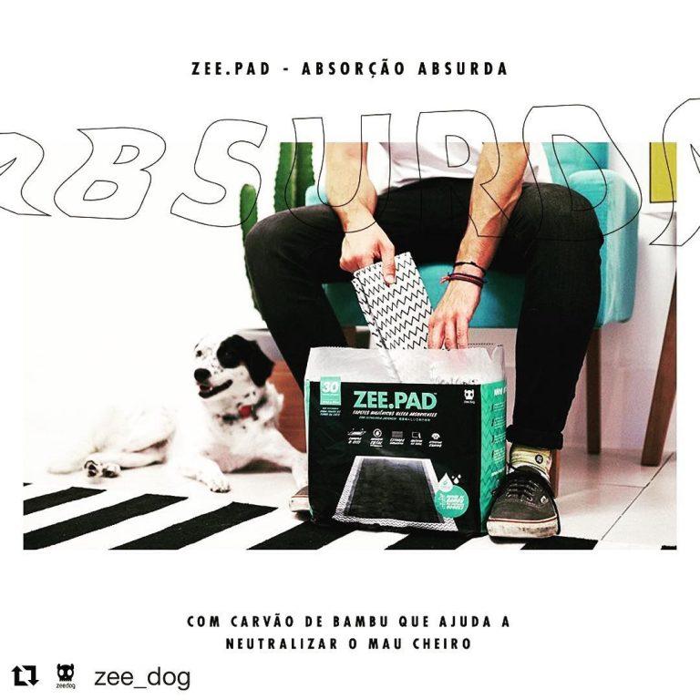 Venham conhecer os novos lançamentos da @zee_dog #puricampo #zeedog #petshop #fa…