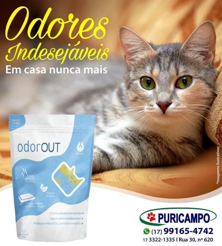 Querendo eliminar aquele odor indesejado de casa? O OdorOut é o produto ideal pa…