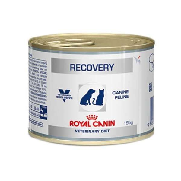 Ração Royal Canin Lata Canine e Feline Veterinary Diet Recovery Wet – 195 g